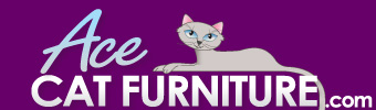 Ace Cat Furniture Perfect Perch Kitty Gym Product Review  Product Review Cafe 1