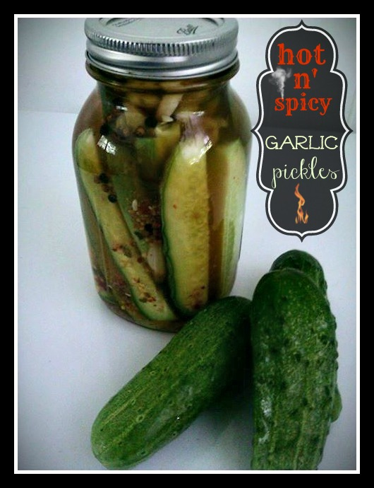 Hot n Spicy Garlic Refrigerator Pickle Spears
