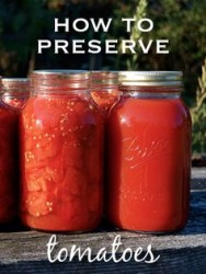 How To Preserve Your Garden Tomatoes Enjoy All Winter   Product Review Cafe
