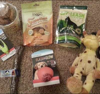 PoochPax Monthly Subscription Box Review & Giveaway