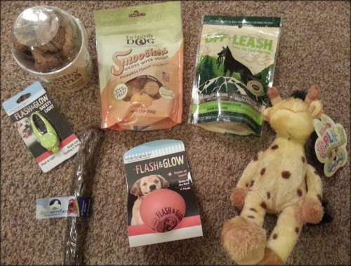 PoochPax Monthly Subscription Box Review & Giveaway  Product Review Cafe