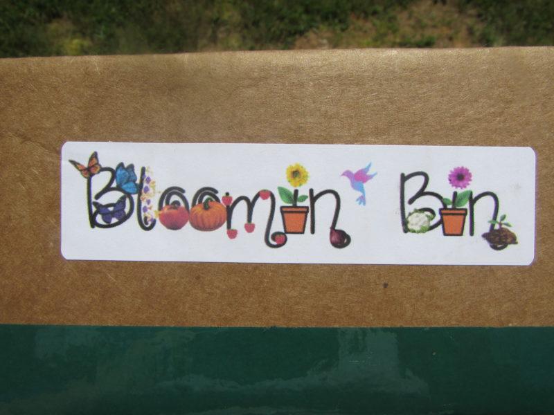 Bloomin Bin Review