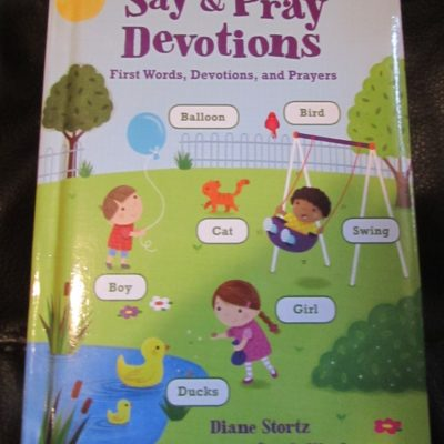 Say & Pray Devotions by Diane Stortz