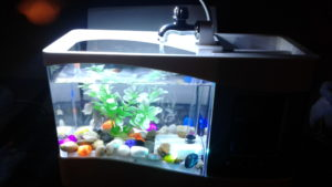 Caveen Mini USB Desktop Fish Tank