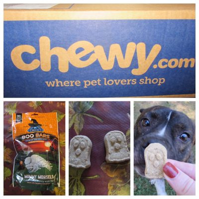 Blue Buffalo Boo Bars Dog Treats #ChewyInfluencer