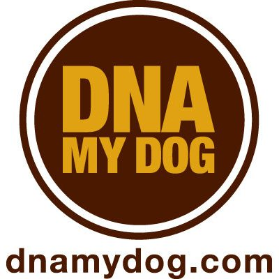 Our DNA My Dog Experience