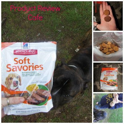 Hill's Science Diet Soft Savories with Beef & Cheddar Dog Treats