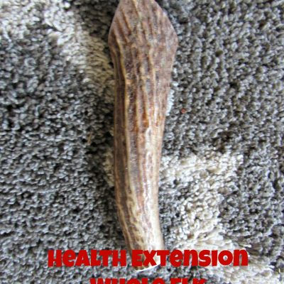 Health Extension Whole Elk Antler #ChewyInfluencer