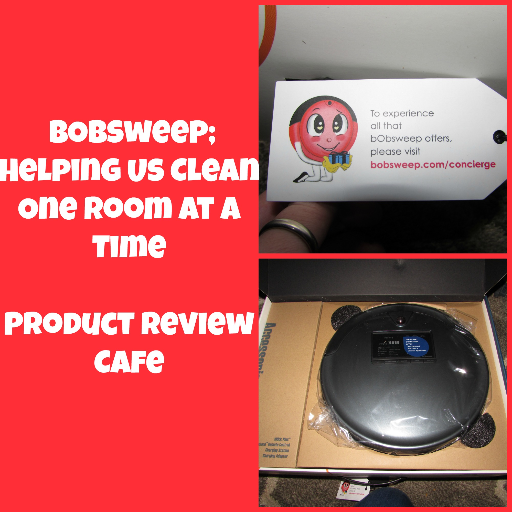 bObsweep; Helping Us Clean One Room at a Time