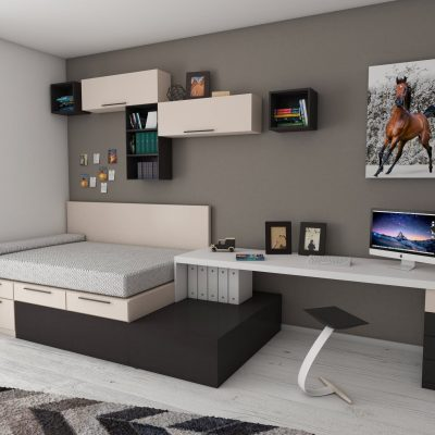 5 Things You Should Know About Buying a Murphy Bed