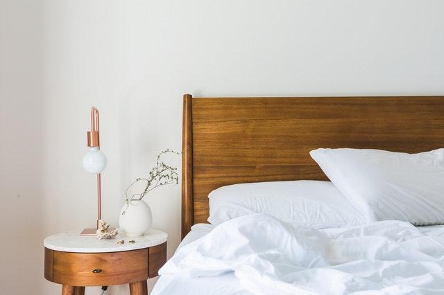 Bed Bug Spring Travel Tips