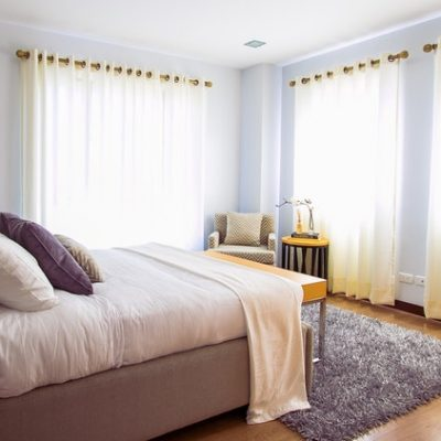 Get Rid of Bed Bugs With Suitable Treatments & Prevention Tips