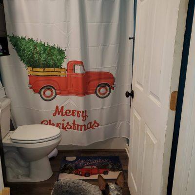 Just So Posh Christmas Shower Curtain